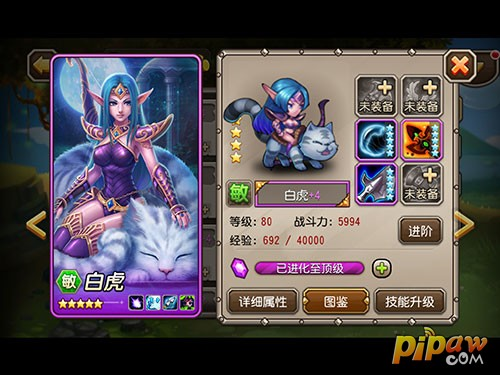 白虎紫色 4